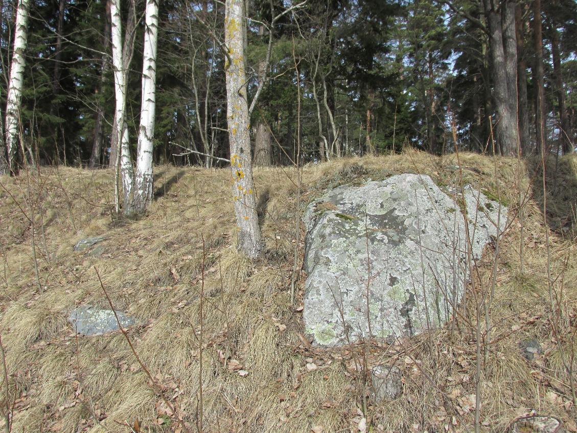 Nimi: Kivikasvot 3, Kuvaaja: Tarja Kaltiomaa