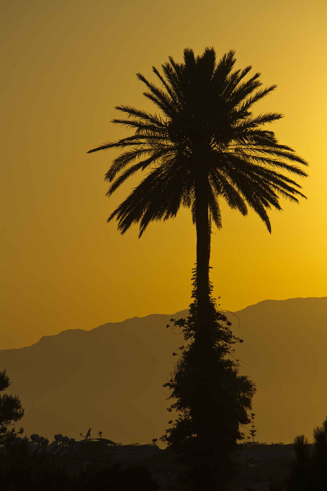Nimi: Auringonlasku, Kuvaaja: Esa Suomaa