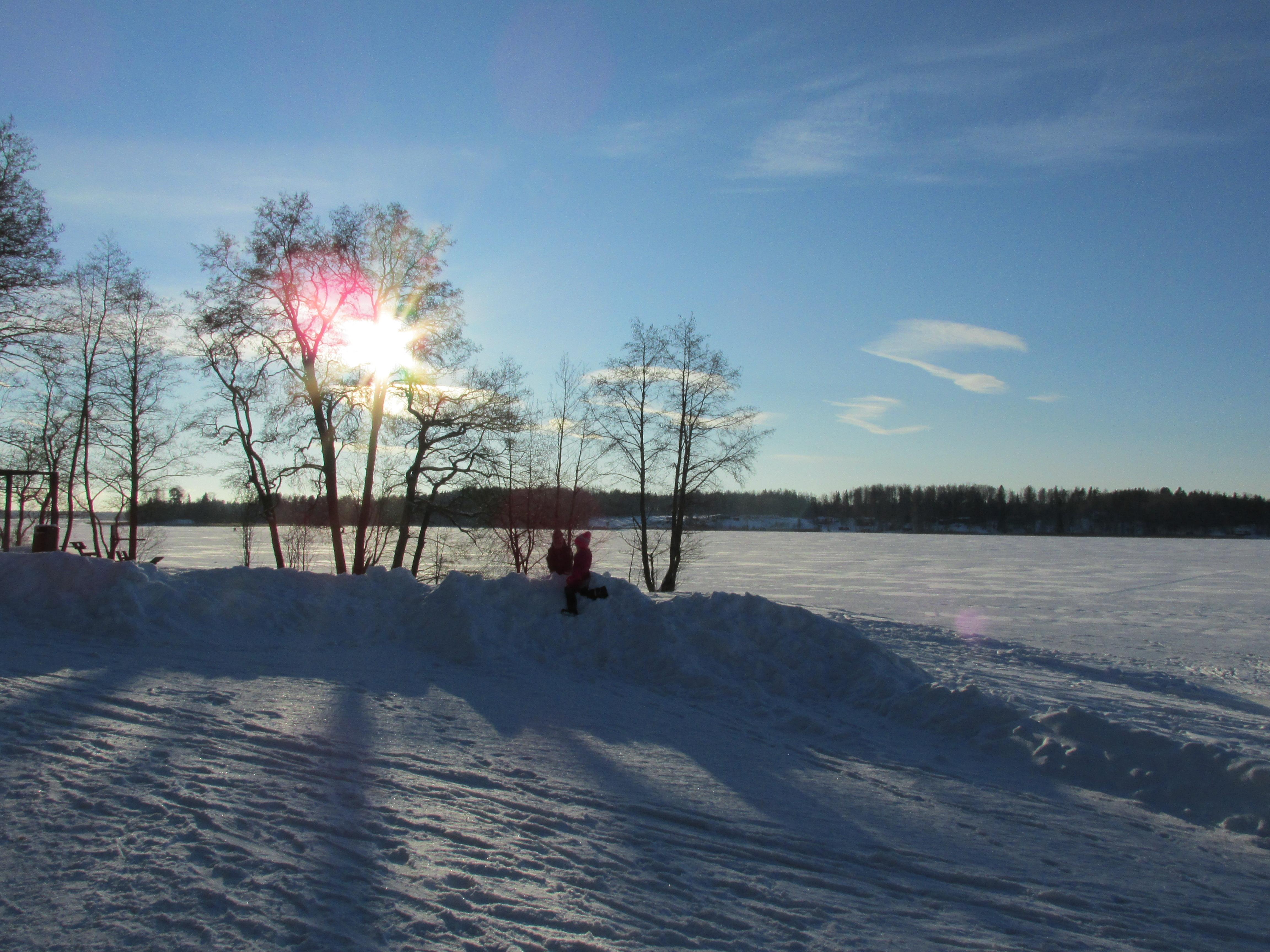 Nimi: Talvinen rantamaisema, Kuvaaja: T. Kaltiomaa